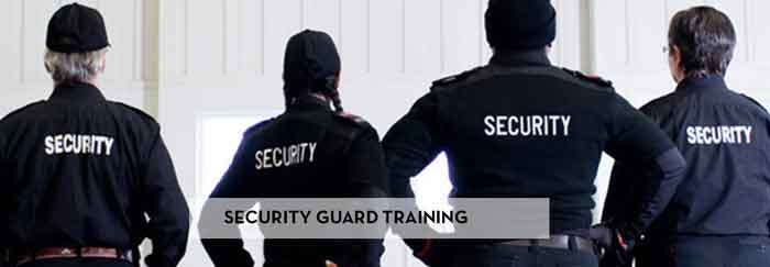Security Guard Services in Schol